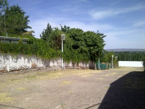 Luján de Cuyo-20141128-00787
